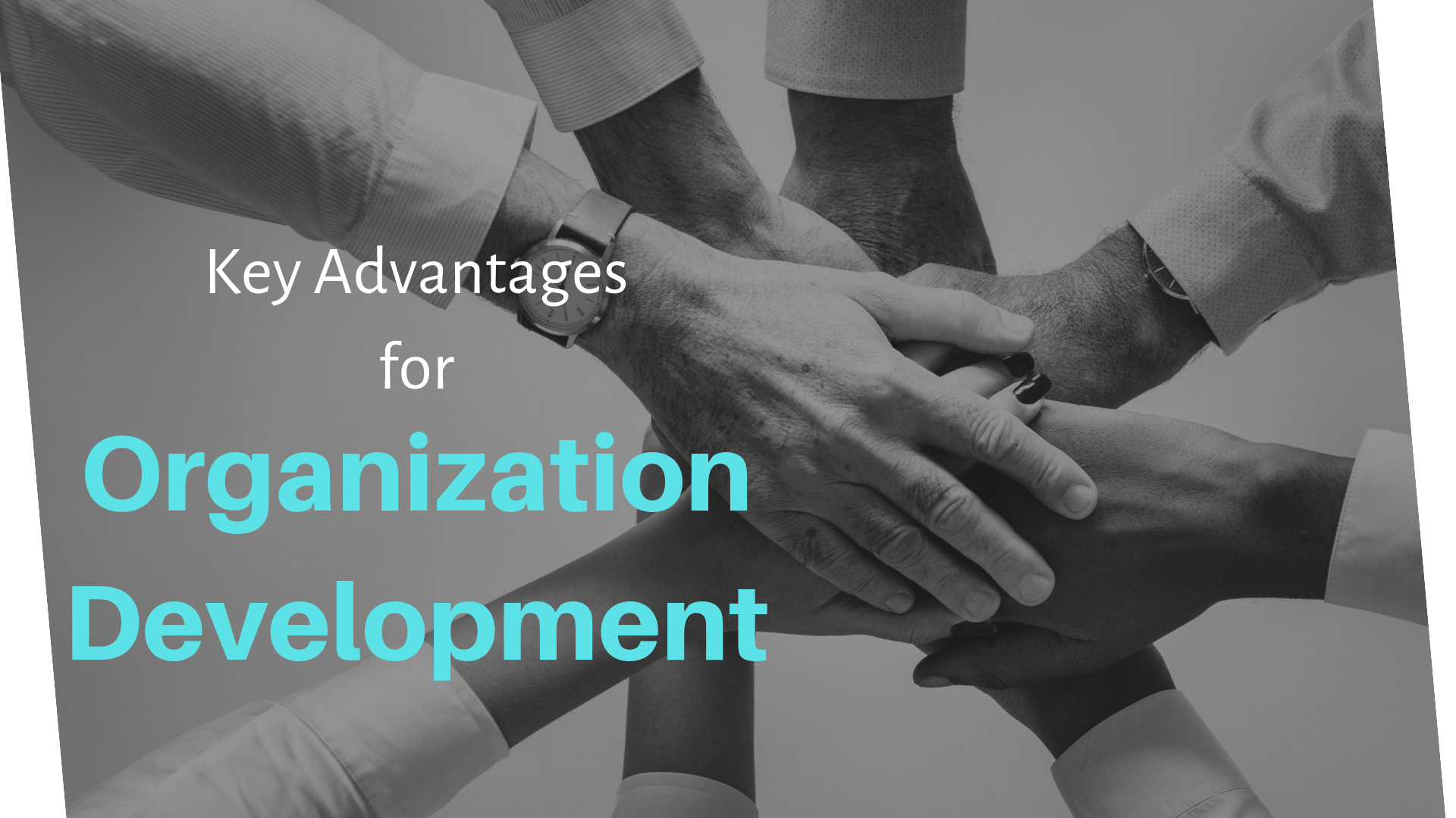 Reasons to Hire Organizational Development (OD) Consultants in Kolkata